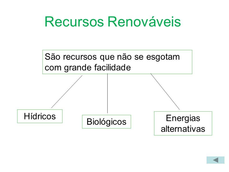 Recursos Renováveis São recursos que não se esgotam com grande facilidade Hídricos Biológicos Energias alternativas