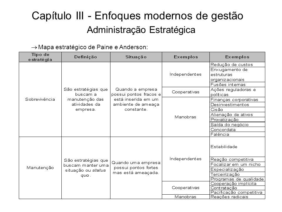 Capítulo III - Enfoques modernos de gestão Mapa estratégico de Paine e Anderson: Administração Estratégica