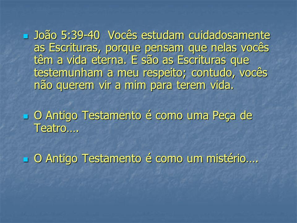 João 5:39-40 Vocês estudam cuidadosamente as Escrituras, porque pensam que nelas vocês têm a vida eterna.