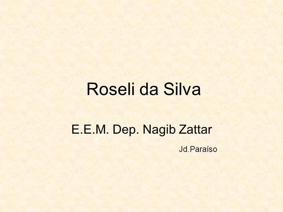 Roseli da Silva E.E.M. Dep. Nagib Zattar Jd.Paraíso
