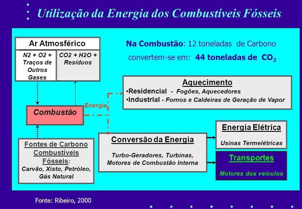Concentração de CO2 na Atmosfera e as Mudanças na Temperatura Terrestre Concentração de CO2 : Pré-Industrial 280 ppm Concentração de CO2 Atual : 360 p