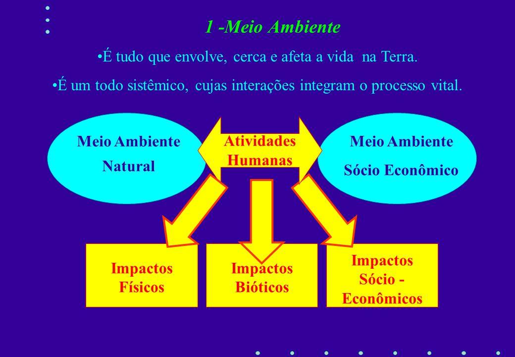 1 - Meio Ambiente