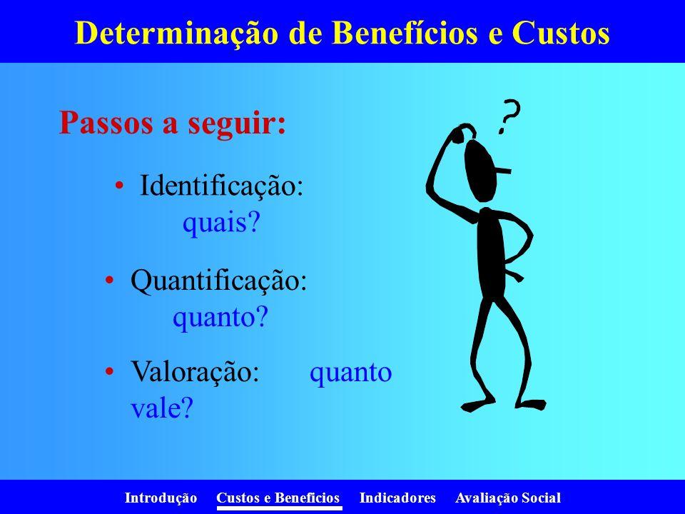 Introdução Custos e Beneficios Indicadores Avaliação Social Determinação de Benefícios e Custos Identificação: quais.
