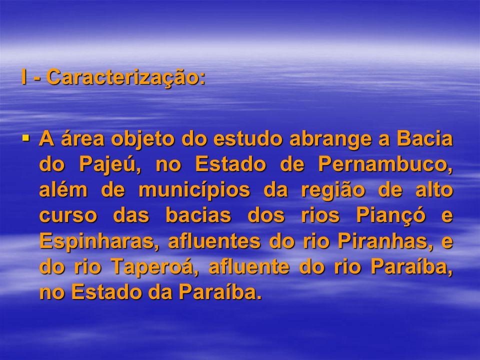 I - Caracterização: A área objeto do estudo abrange a Bacia do Pajeú, no Estado de Pernambuco, além de municípios da região de alto curso das bacias d