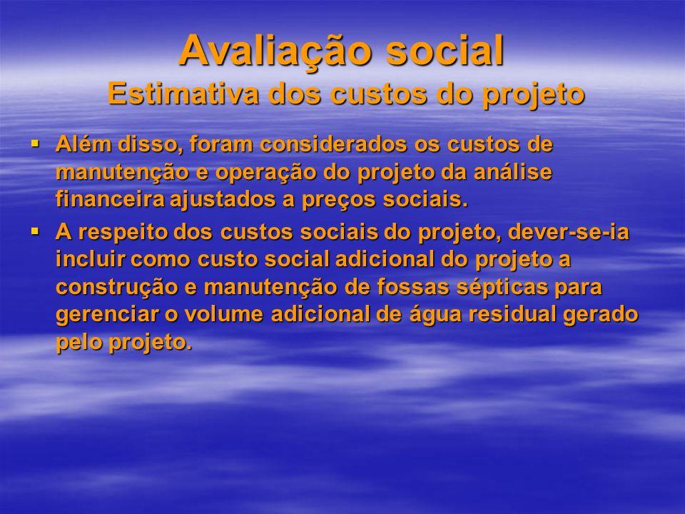 Avaliação social Estimativa dos custos do projeto Além disso, foram considerados os custos de manutenção e operação do projeto da análise financeira a