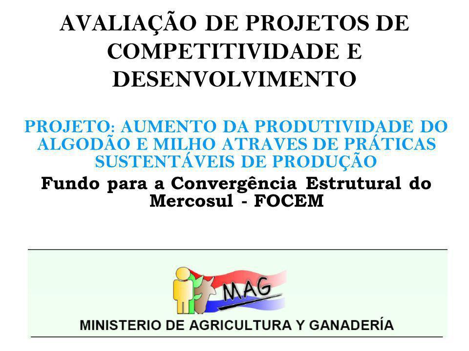 IDENTIFICAÇÃO DO PROBLEMA A agricultura das pequenas propriedades na Região Oriental do Paraguai esta baseada: na queima, preparação do solo com arado e utilização de produtos químicos.
