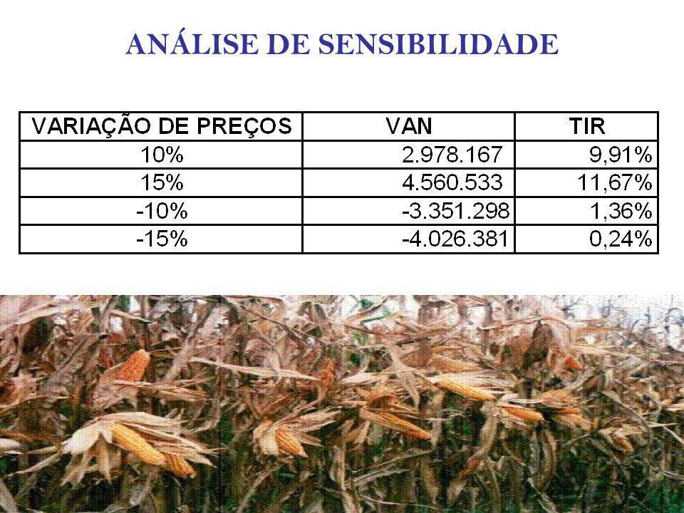 CONCLUSÃO -A apresentação do projeto apresentado pelo Paraguai não é viável; -O projeto é viável a partir da incorporação de 3.000 agricultores e sua assistência técnica; -O projeto é muito sensível a taxa de desconto e dos preços; -Apesar disso existe benefícios não valoráveis que podiam melhorar o projeto.