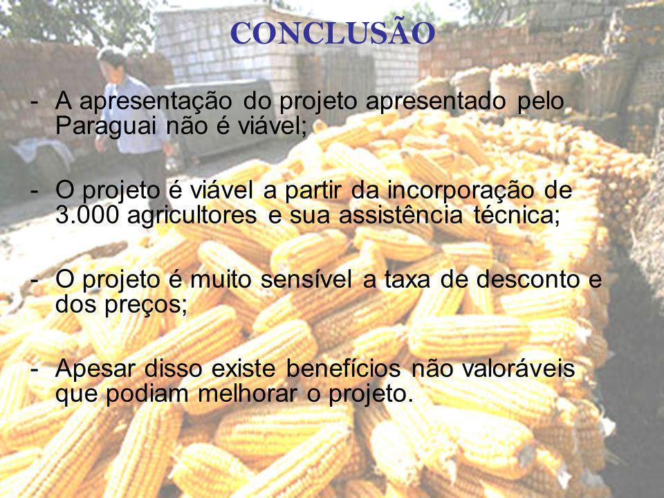 CONCLUSÃO -A apresentação do projeto apresentado pelo Paraguai não é viável; -O projeto é viável a partir da incorporação de 3.000 agricultores e sua