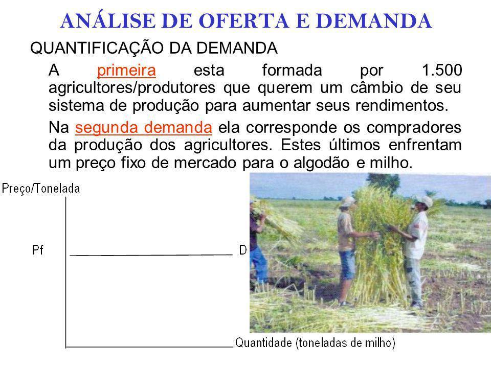 ANÁLISE DE OFERTA E DEMANDA QUANTIFICAÇÃO DA OFERTA A produção dos agricultores irá aumentar durante os anos pela melhora dos rendimentos dos cultivos e pela utilização do sistema de semeadura direta.