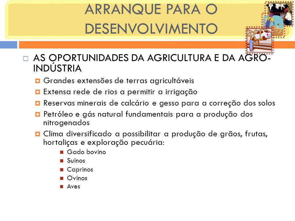 ARRANQUE PARA O DESENVOLVIMENTO AS OPORTUNIDADES DA AGRICULTURA E DA AGRO- INDÚSTRIA Grandes extensões de terras agricultáveis Extensa rede de rios a