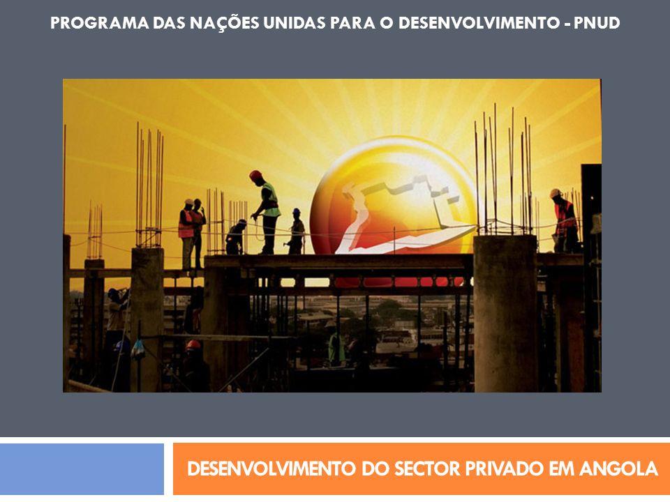 DESENVOLVIMENTO DO SECTOR PRIVADO EM ANGOLA PROGRAMA DAS NAÇÕES UNIDAS PARA O DESENVOLVIMENTO - PNUD