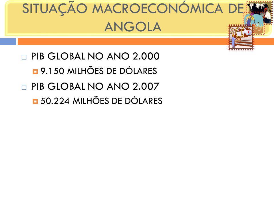 SITUAÇÃO MACROECONÓMICA DE ANGOLA PIB GLOBAL NO ANO 2.000 9.150 MILHÕES DE DÓLARES PIB GLOBAL NO ANO 2.007 50.224 MILHÕES DE DÓLARES