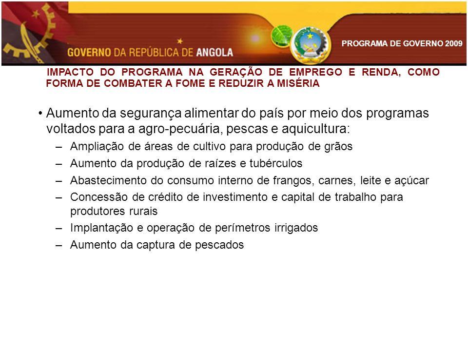 PROGRAMA DE GOVERNO 2009 IMPACTO DO PROGRAMA NA GERAÇÃO DE EMPREGO E RENDA, COMO FORMA DE COMBATER A FOME E REDUZIR A MISÉRIA Aumento da segurança ali
