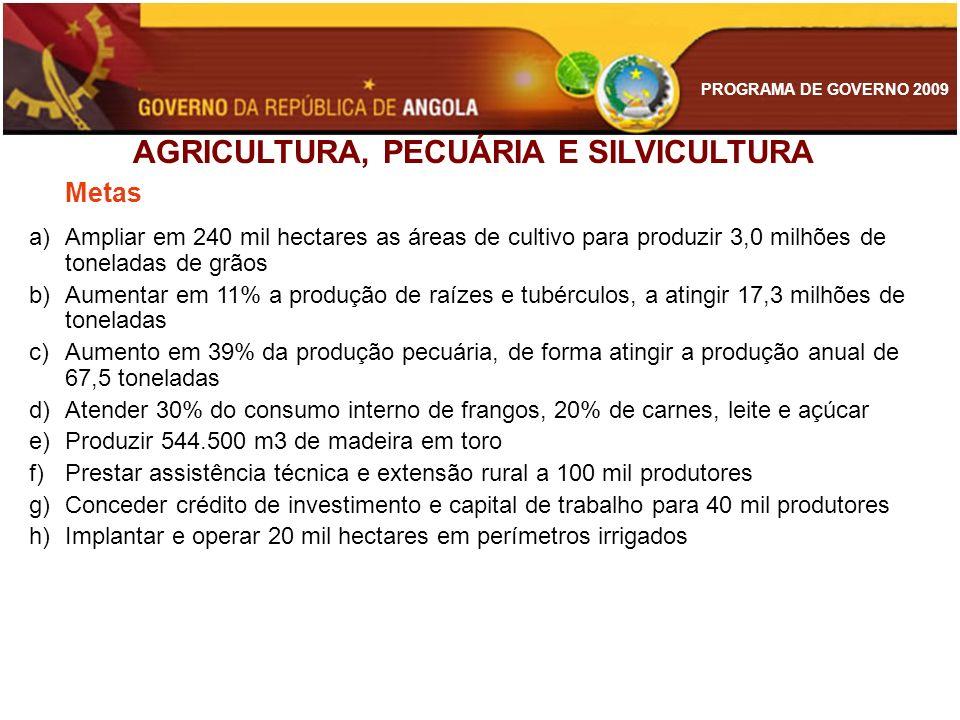PROGRAMA DE GOVERNO 2009 AGRICULTURA, PECUÁRIA E SILVICULTURA Metas a)Ampliar em 240 mil hectares as áreas de cultivo para produzir 3,0 milhões de ton