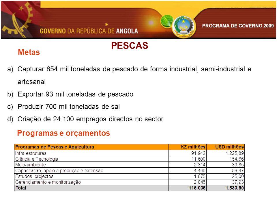 PROGRAMA DE GOVERNO 2009 a)Capturar 854 mil toneladas de pescado de forma industrial, semi-industrial e artesanal b)Exportar 93 mil toneladas de pesca