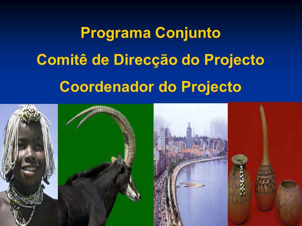 Programa Conjunto Comitê de Direcção do Projecto Coordenador do Projecto