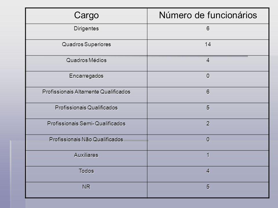 Cargo Número de funcionários Dirigentes6 Quadros Superiores 14 Quadros Médios 4 Encarregados0 Profissionais Altamente Qualificados 6 Profissionais Qualificados 5 Profissionais Semi- Qualificados 2 Profissionais Não Qualificados 0 Auxiliares1 Todos4 NR5