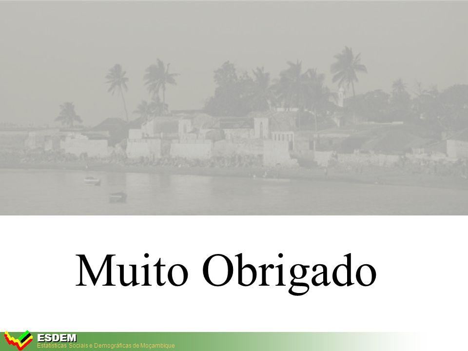 Estatísticas Sociais e Demográficas de Moçambique ESDEM ESDEM Base de Dados Análise de Disparidades – Taxa bruta de escolarização no ensino primário Fonte: INE, Censo 97, QUIBB 2001 e IAF 2003 66.8 90.7 100.1 0 20 40 60 80 100 120 199720012003