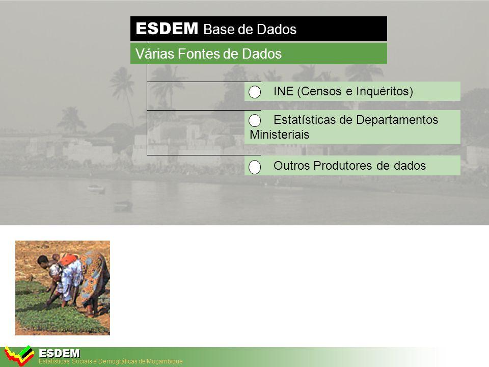 Estatísticas Sociais e Demográficas de Moçambique ESDEM ESDEM Base de Dados Fácil manuseamento dos dados Nível Nacional e Sub-nacional Análises de disparidades (Mapas) Análises de tendências (Gráficos) INDICADOR Base de dados Todos dados são armazenados num sistema Dados Características Chaves