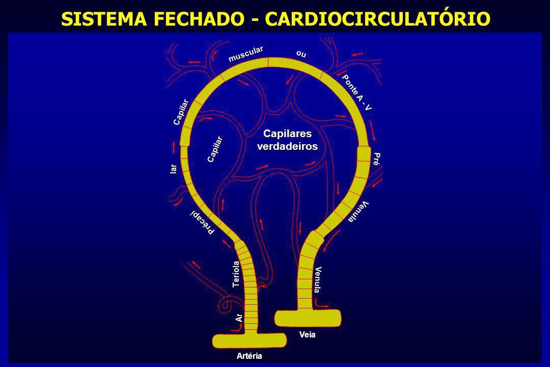 SISTEMA FECHADO - CARDIOCIRCULATÓRIO