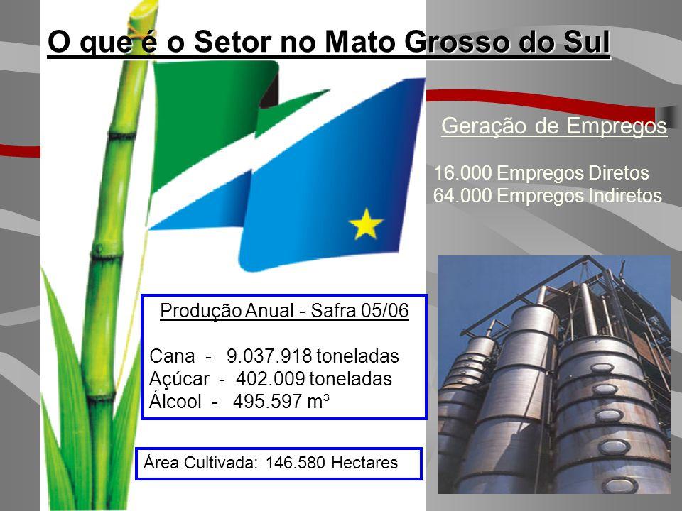 CRESCIMENTO DA OFERTA DE CANA TOTAL NO BRASIL Fonte: UNICA – Outubro/2006 SAFRA 2006/07425 MILHÕES T.C. SAFRA 2012/13685 MILHÕES T.C. AUMENTO DA OFERT