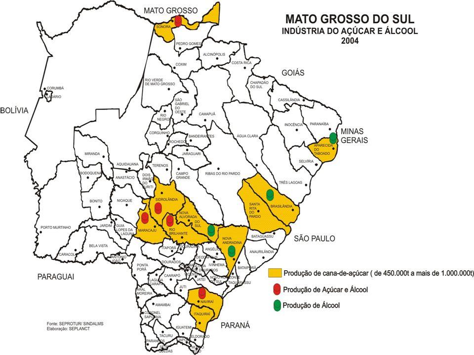 O que é o Setor no Mato Grosso do Sul Geração de Empregos 16.000 Empregos Diretos 64.000 Empregos Indiretos Produção Anual - Safra 05/06 Cana - 9.037.