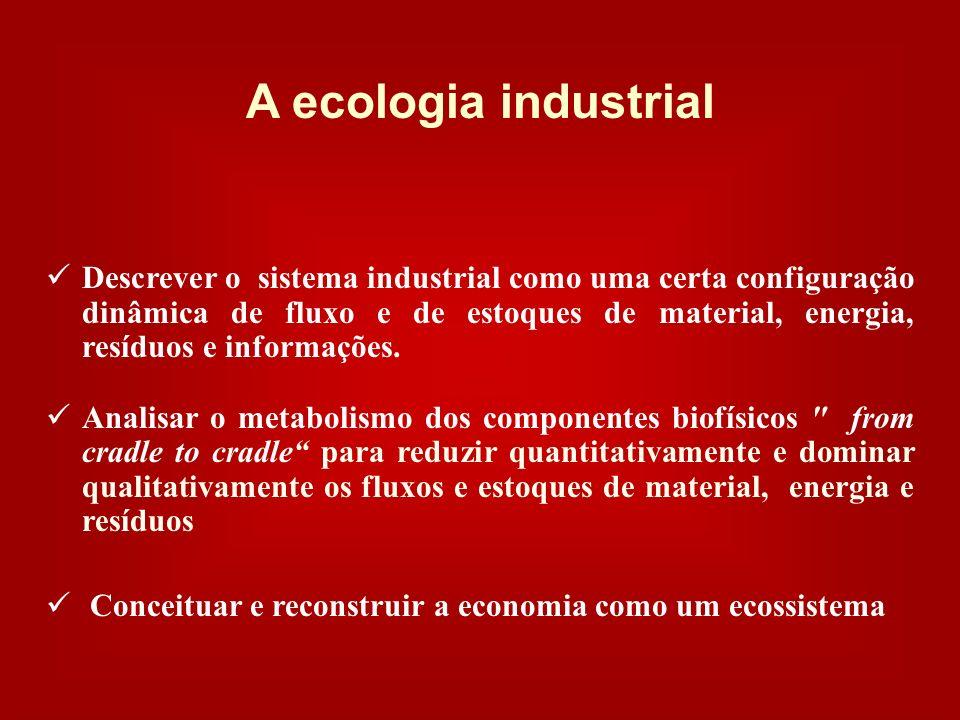 A economia da sustentabilidade - a ecologia industrial – tem uma visão Desconectar o acréscimo das performances econômicas e dos fluxos financeiros de