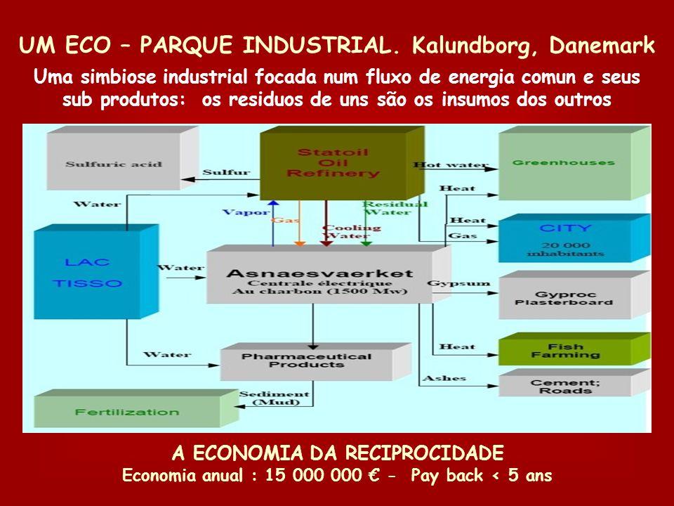 Práticas de desmaterialização Eco- parques industriais Eco- pólos de eco-atividades Eco- territórios de redes Eco- redes de territórios Pólos de ativi