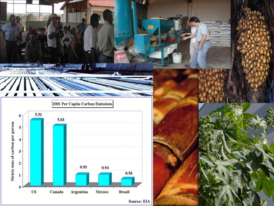Sustainable Development Desarrollo Sostenible Développement Durable Um novo objeto do saber e do saber fazer a liga - o ligado - o ligante O Desenvolv