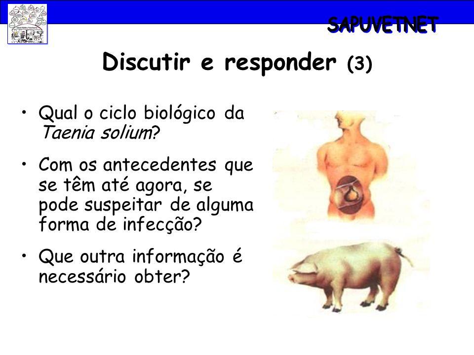 Discutir e responder (3) Qual o ciclo biológico da Taenia solium? Com os antecedentes que se têm até agora, se pode suspeitar de alguma forma de infec