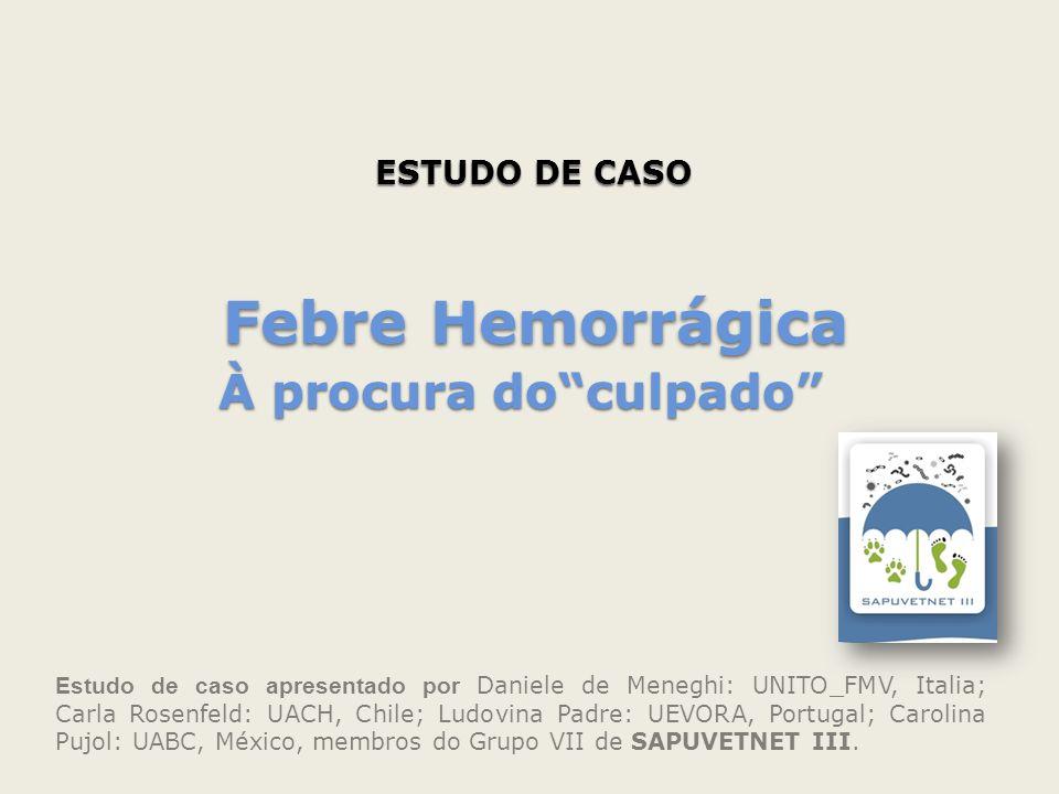 ESTUDO DE CASO Estudo de caso apresentado por Daniele de Meneghi: UNITO_FMV, Italia; Carla Rosenfeld: UACH, Chile; Ludovina Padre: UEVORA, Portugal; C