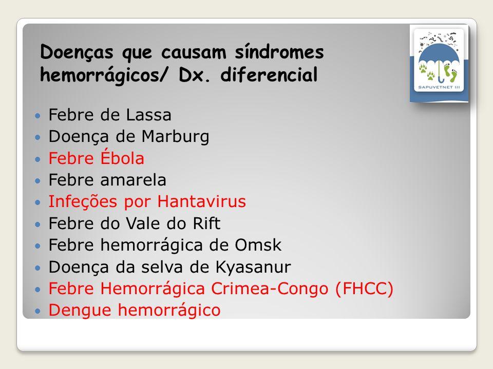 Doenças que causam síndromes hemorrágicos/ Dx. diferencial Febre de Lassa Doença de Marburg Febre Ébola Febre amarela Infeções por Hantavirus Febre do