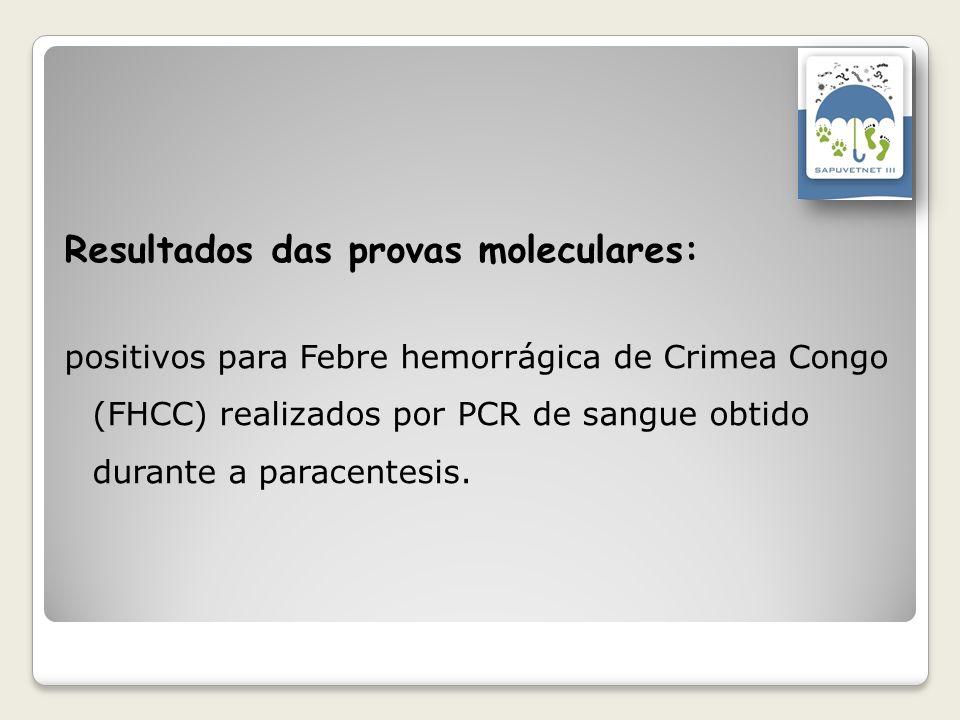 Resultados das provas moleculares: positivos para Febre hemorrágica de Crimea Congo (FHCC) realizados por PCR de sangue obtido durante a paracentesis.