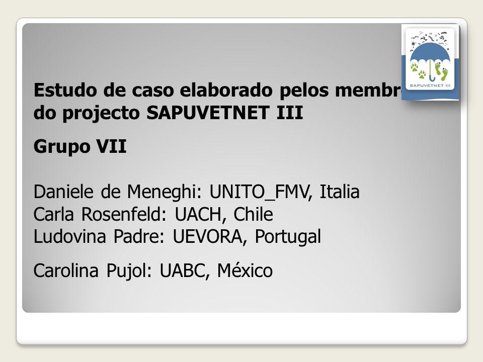 Estudo de caso elaborado pelos membroses do projecto SAPUVETNET III Grupo VII Daniele de Meneghi: UNITO_FMV, Italia Carla Rosenfeld: UACH, Chile Ludov