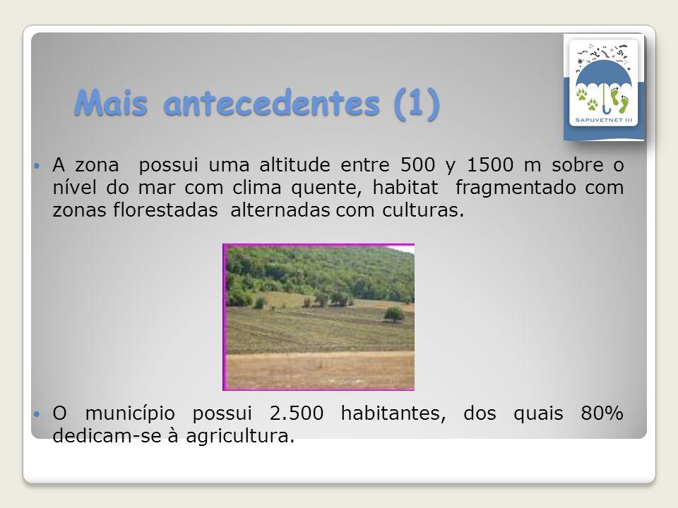 Mais antecedentes (1) A zona possui uma altitude entre 500 y 1500 m sobre o nível do mar com clima quente, habitat fragmentado com zonas florestadas a