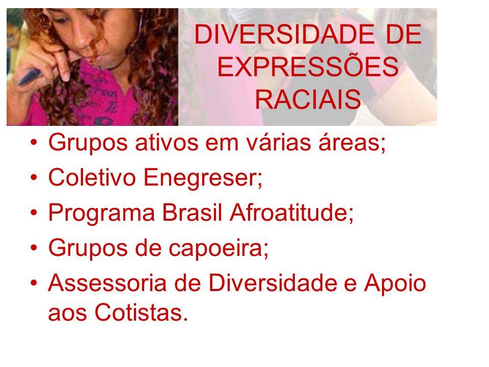 Grupos ativos em várias áreas; Coletivo Enegreser; Programa Brasil Afroatitude; Grupos de capoeira; Assessoria de Diversidade e Apoio aos Cotistas. DI