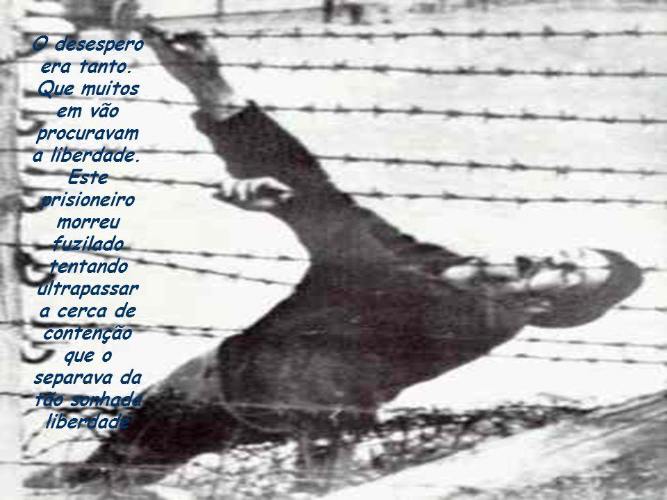 O desespero era tanto.Que muitos em vão procuravam a liberdade.