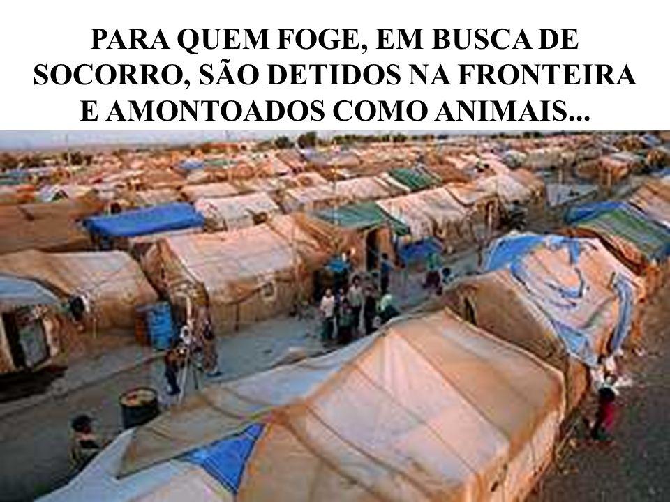 PARA QUEM FOGE, EM BUSCA DE SOCORRO, SÃO DETIDOS NA FRONTEIRA E AMONTOADOS COMO ANIMAIS...
