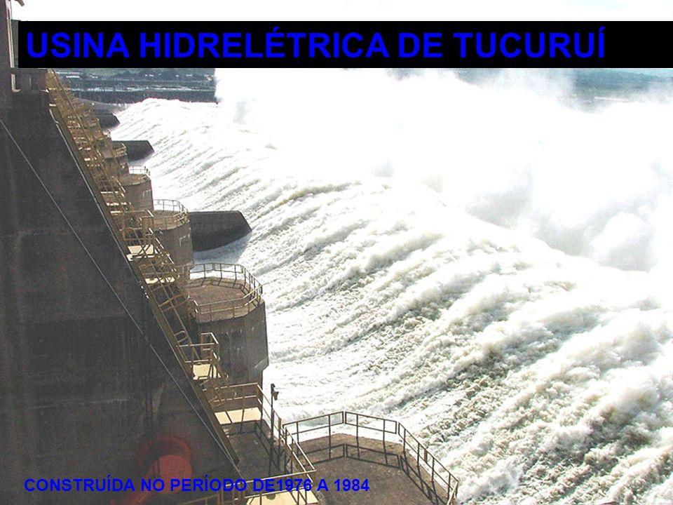 HIDRELÉTRICA DE TUCURUÍ 31 DE MARÇO DE 2009 19 Usina Hidrelétrica de Tucuruí é a maior usina hidrelétrica 100% brasileira localizada a 400 km de Belém no estado do Pará, município de Tucuruí.
