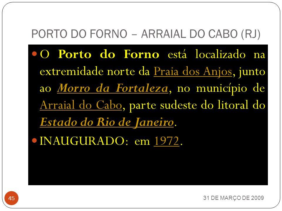 31 DE MARÇO DE 2009 44