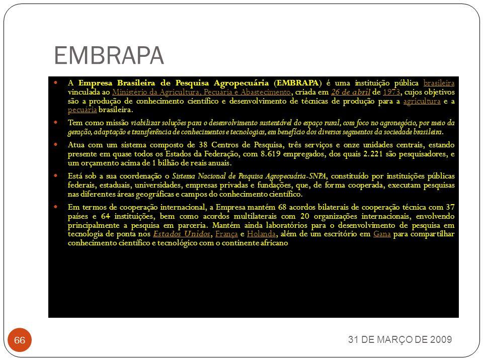 ELETROBRÁS 31 DE MARÇO DE 2009 65 Eletrobrás é uma empresa de economia mista e de capital aberto sob controle acionário do Governo Federal brasileiro