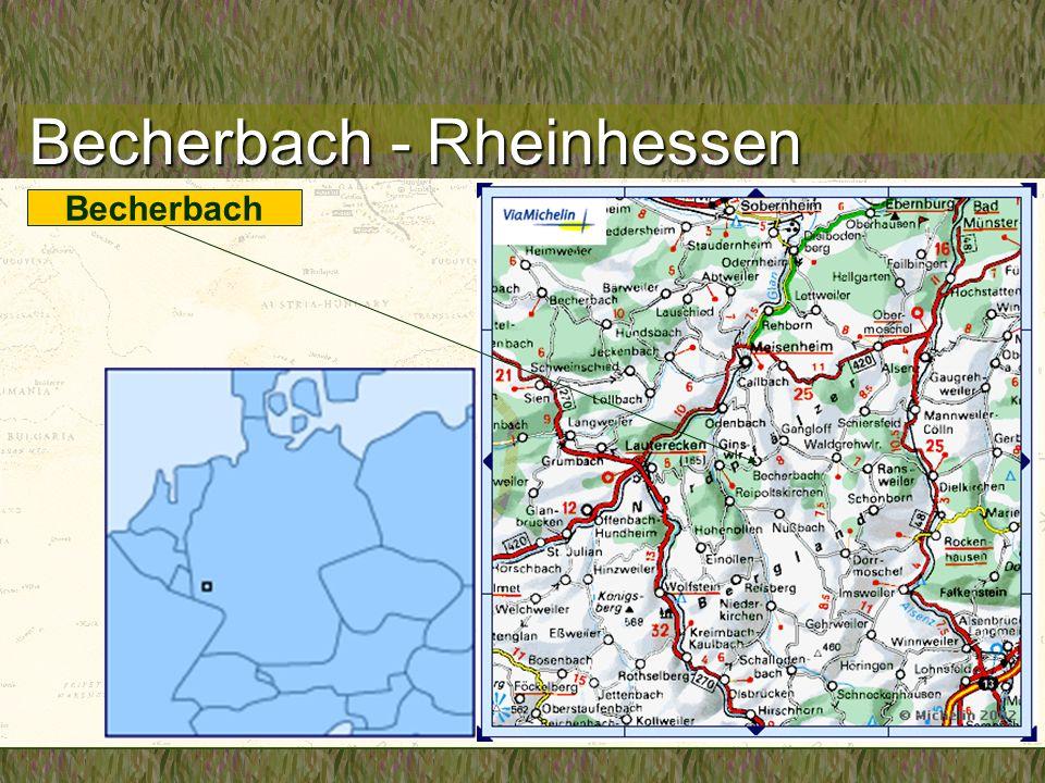 Becherbach Becherbach - Rheinhessen