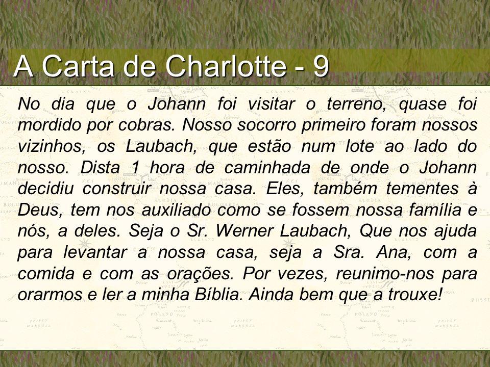 A Carta de Charlotte - 9 No dia que o Johann foi visitar o terreno, quase foi mordido por cobras. Nosso socorro primeiro foram nossos vizinhos, os Lau