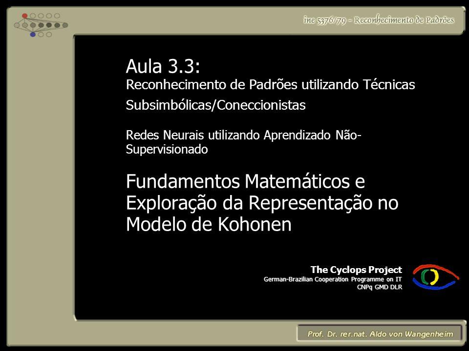 The Cyclops Project German-Brazilian Cooperation Programme on IT CNPq GMD DLR Aula 3.3: Reconhecimento de Padrões utilizando Técnicas Subsimbólicas/Coneccionistas Redes Neurais utilizando Aprendizado Não- Supervisionado Fundamentos Matemáticos e Exploração da Representação no Modelo de Kohonen