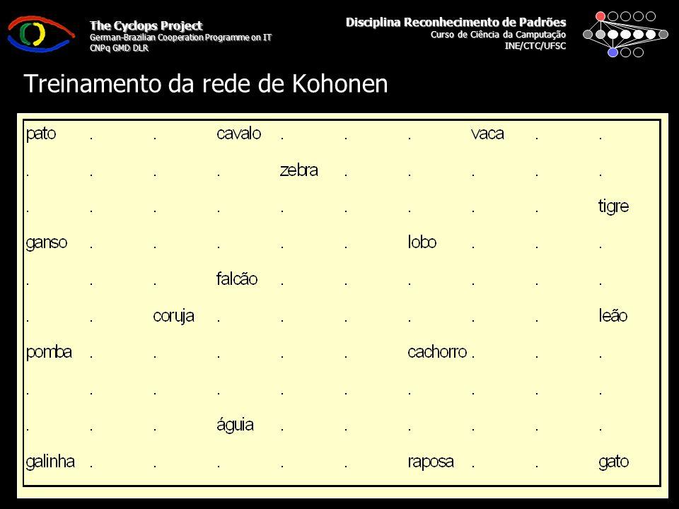 Disciplina Reconhecimento de Padrões Curso de Ciência da Camputação INE/CTC/UFSC The Cyclops Project German-Brazilian Cooperation Programme on IT CNPq