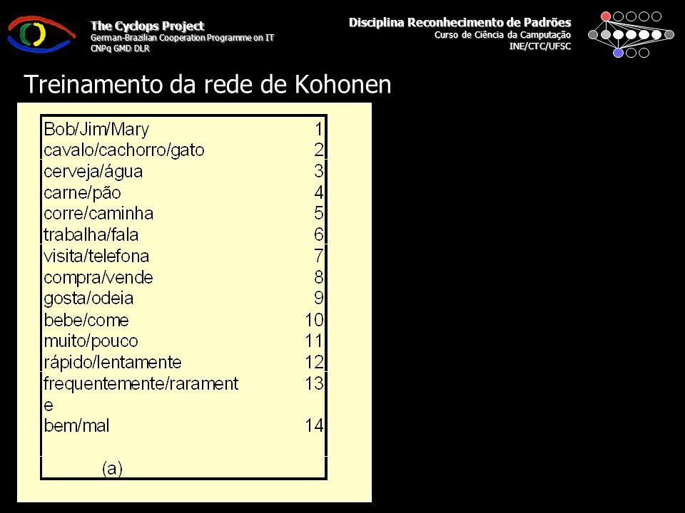 Disciplina Reconhecimento de Padrões Curso de Ciência da Camputação INE/CTC/UFSC The Cyclops Project German-Brazilian Cooperation Programme on IT CNPq GMD DLR Treinamento da rede de Kohonen