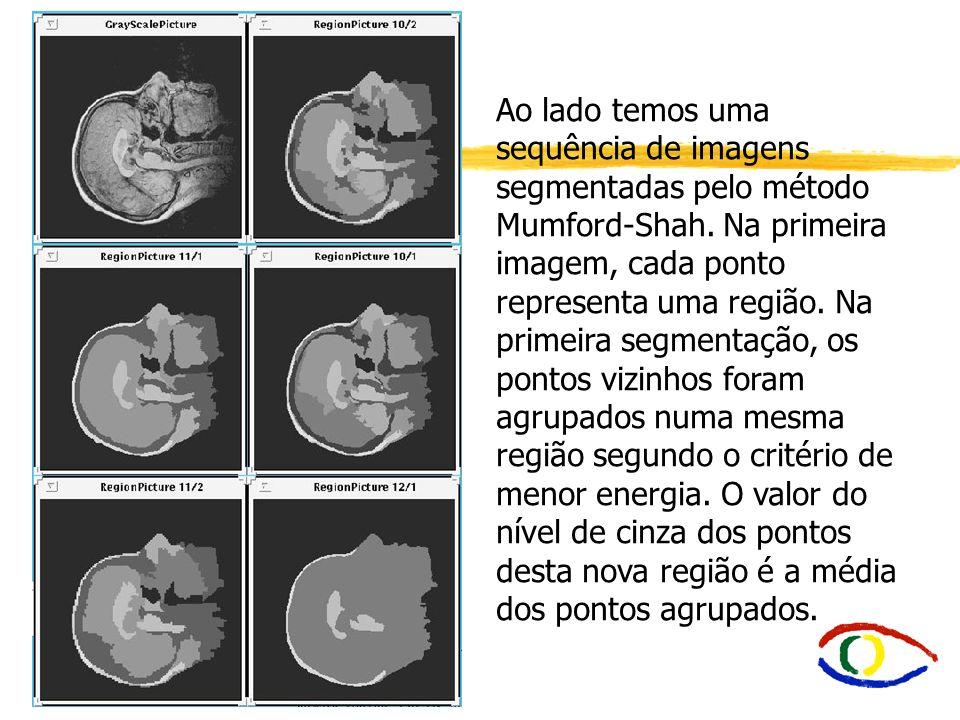 Ao lado temos uma sequência de imagens segmentadas pelo método Mumford-Shah. Na primeira imagem, cada ponto representa uma região. Na primeira segment