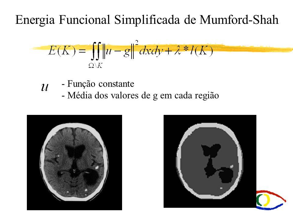 Energia Funcional Simplificada de Mumford-Shah - Função constante - Média dos valores de g em cada região