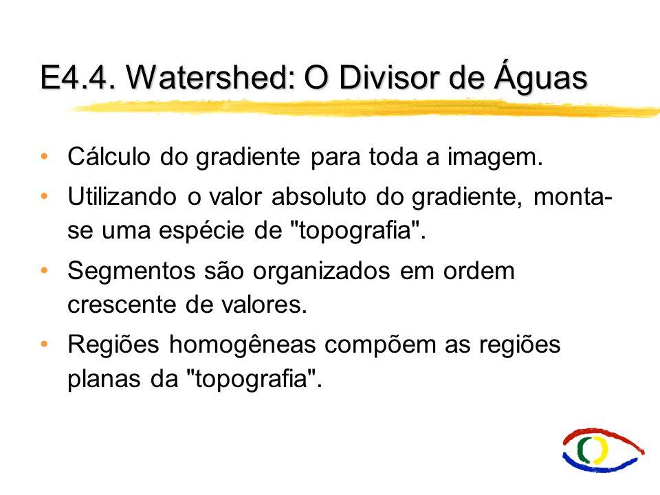 E4.4. Watershed: O Divisor de Águas Cálculo do gradiente para toda a imagem. Utilizando o valor absoluto do gradiente, monta- se uma espécie de