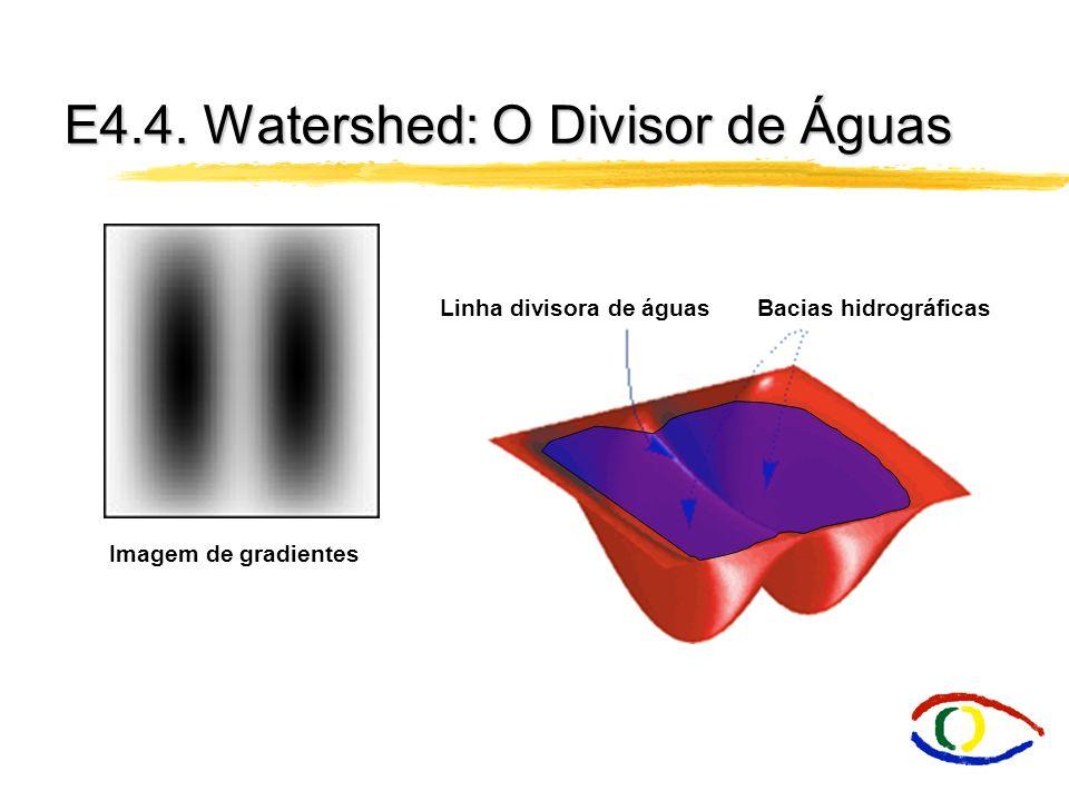 E4.4. Watershed: O Divisor de Águas Linha divisora de águas Bacias hidrográficas Imagem de gradientes